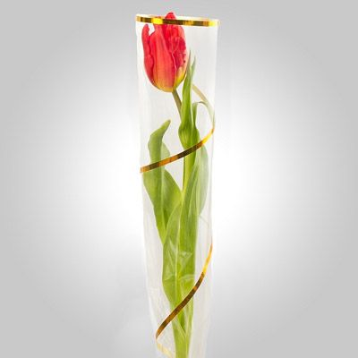 Букет из 1 тюльпана
